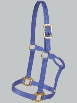 Halter Royal Blue 800-1100